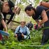 Bild av studenter som studerar växtlighet under en exkursion..
