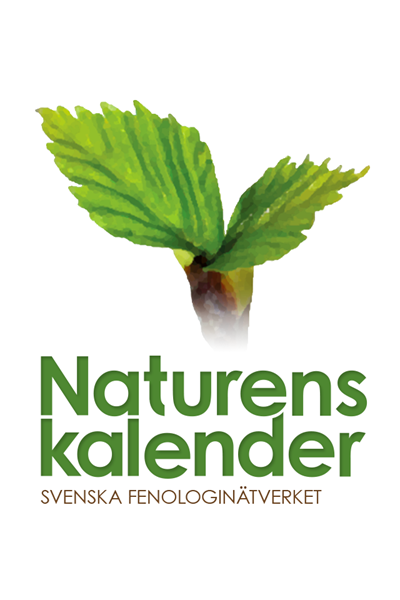Illustration: Naturens kalender