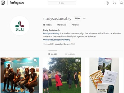 Instagram-studysustainably-880x660.jpg