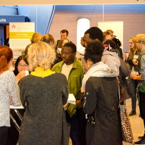 Participants-discussing-during-coffebreak-Photo-Emelie-Zonabend-König.jpg