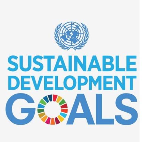 SDG_eng.jpg