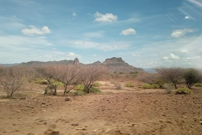 Dry landscape with a few trees in front of a hill in Turkana.