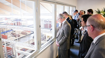 Observation room window at the Swedish Livestock Research Center. HMK Carl XVI Gustaf looks down at the cattle stables at the inauguration of the facility in May 2012. Photo
