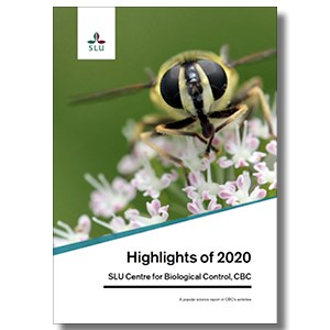 A cover for a report with a close-up of a hover fly. Photo.