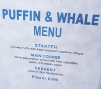 puffin and whale menu2.jpg