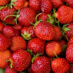 strawberries, close-up picture
