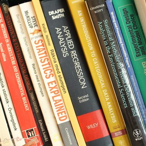 Courses in statistics | Externwebben