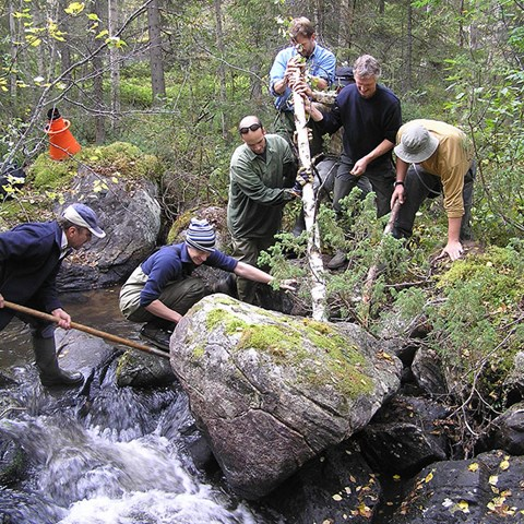 Group moving stone in water course. Photo.