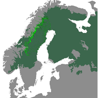 Map with a light green belt from the middle of Sweden and up to the north.