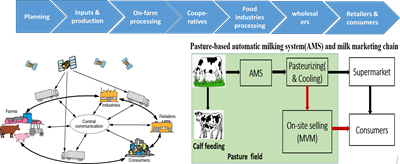Flowchart over digitalisation and Automation in an integrated Agriculture and Food Value Chain
