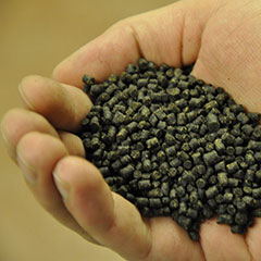 A hand holding pelleted fish feed. Photo.