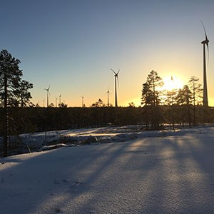 Wind farm in sunset and snow. Photo.
