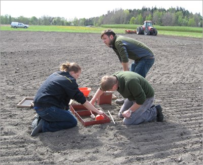 Three people on a field takes samples, photo.