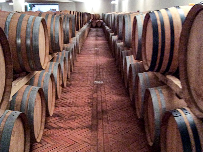 Wine barrels in long rows indoors, photo.
