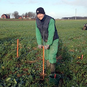 A man with a shovel on a green field, photo.