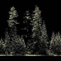 Data from dense laser scanning.png