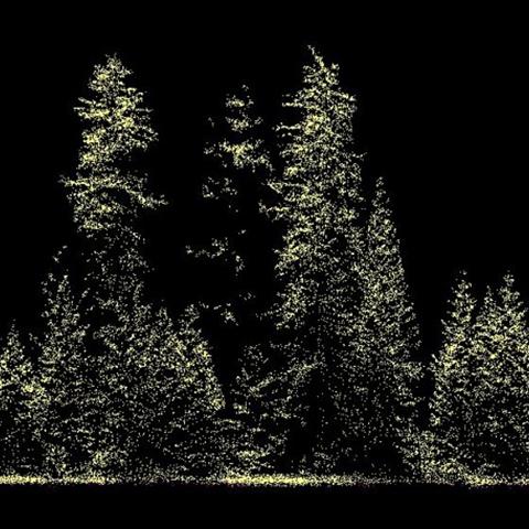 Data from dense laser scanning.png