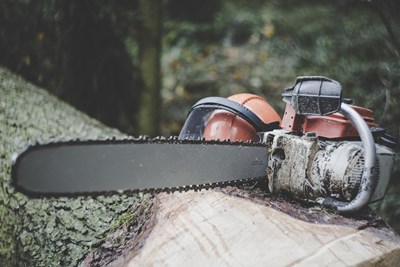 Chainsaw and a helmet on a log, photo.