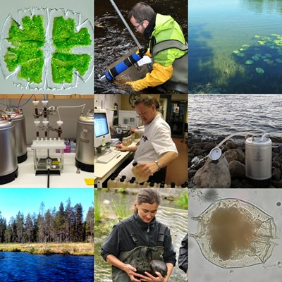 Collage with nine photos of among others plankton, sampling and laboratory work.