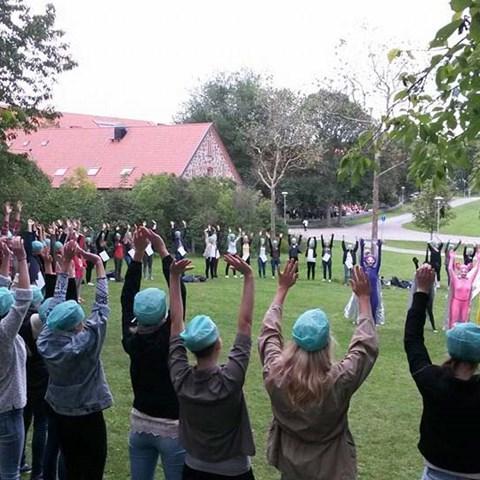 studenter-juli2016-elin-thorsson-webb.jpg
