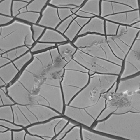 nanotitan300.jpg