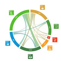 Associations between SLU's publications and the global goals. Illustration.