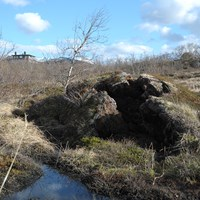 Photo of thawing permafrost in Abisko