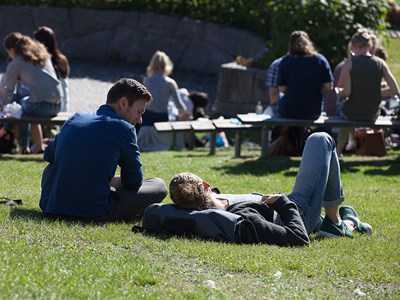 Students lying in the sun on lawn, photo.